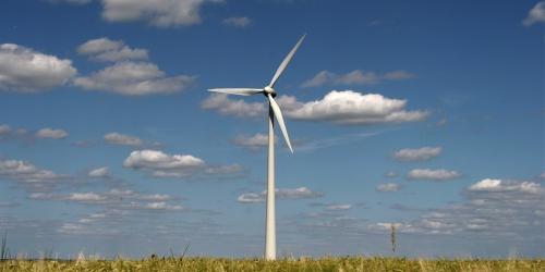 La participation des citoyens est au centre du développement éolien en Wallonie